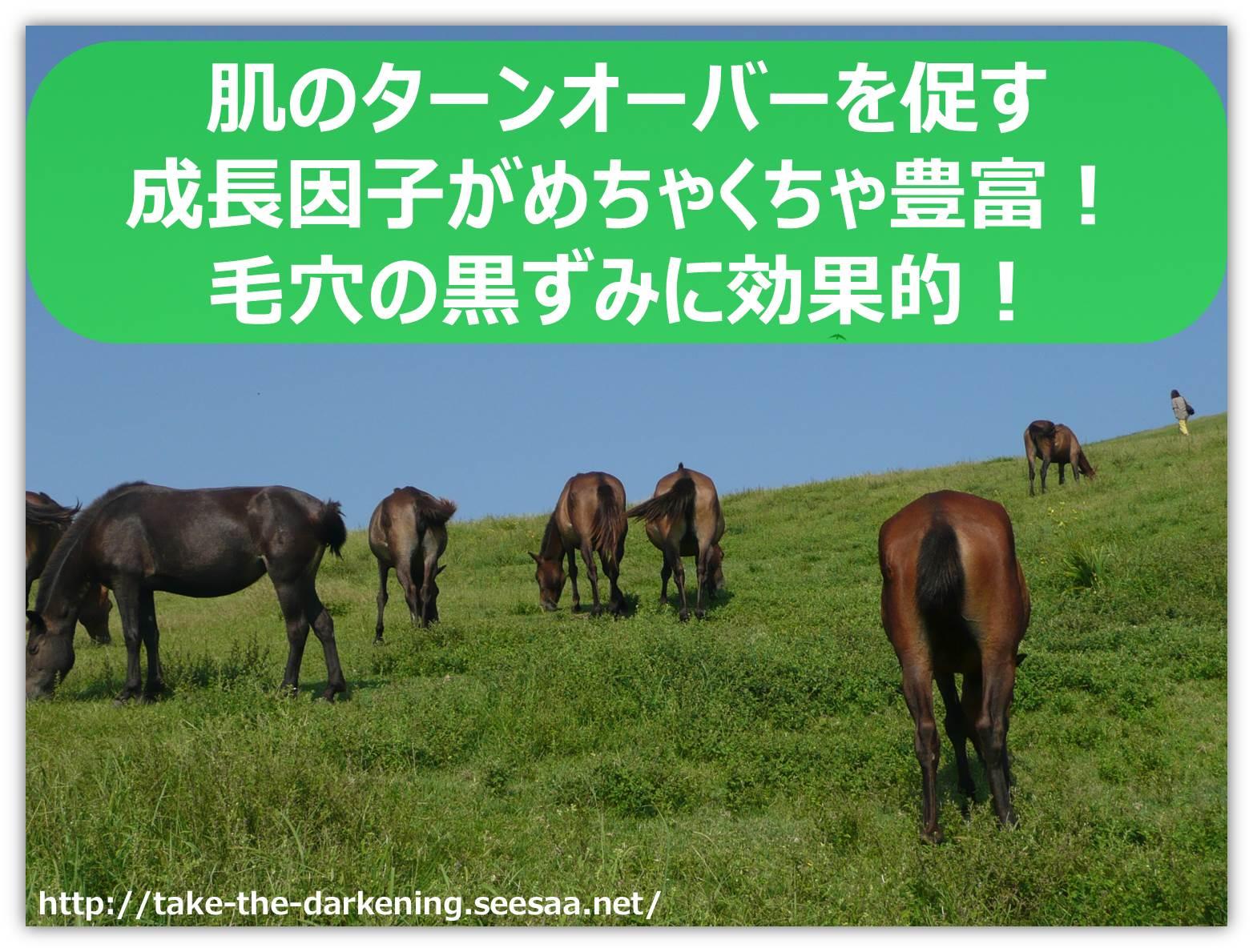 馬プラセンタ.jpg